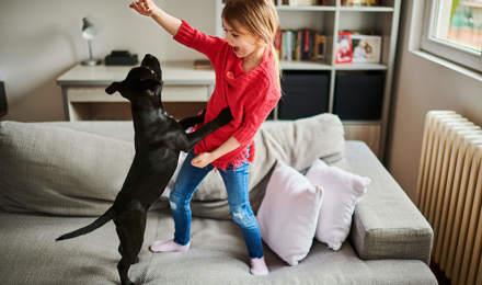 Een nieuwe puppy - checklist voor hondenbenodigdheden